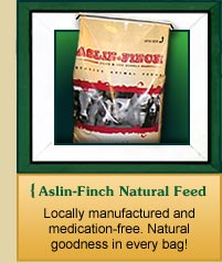 Natural Animal Feed